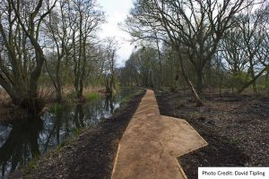 Access improvement work by Wildscapes