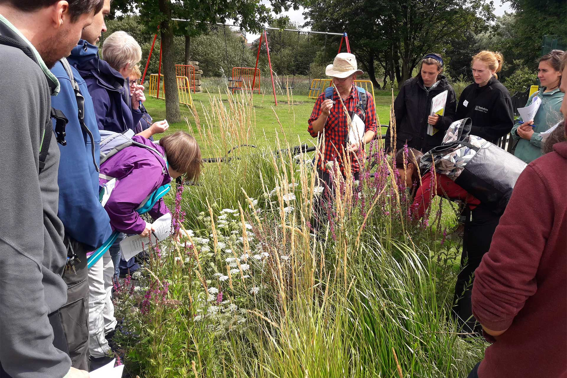 Wildflower ID Workshop delivered by Wildscapes