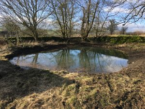 Wildscapes pond restoration in Derbyshire